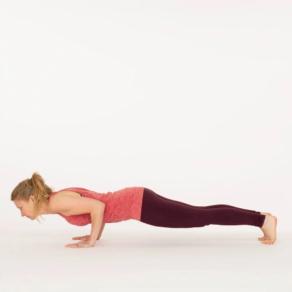 Chaturanga Dandasana Ekhart Yoga