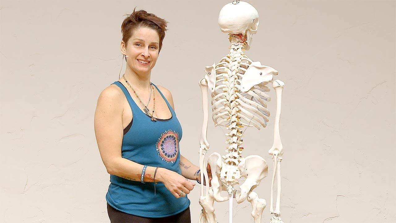 Yoga anatomy class sacroiliac joint