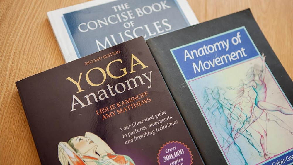A Beginners Guide To Anatomy Terms Ekhart Yoga