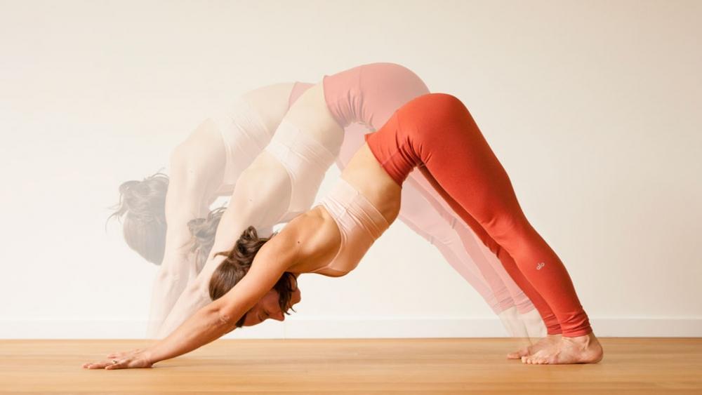 spine practice