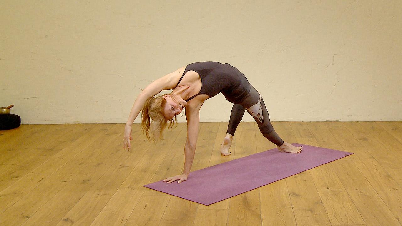 40 steps into wild thing  Ekhart Yoga