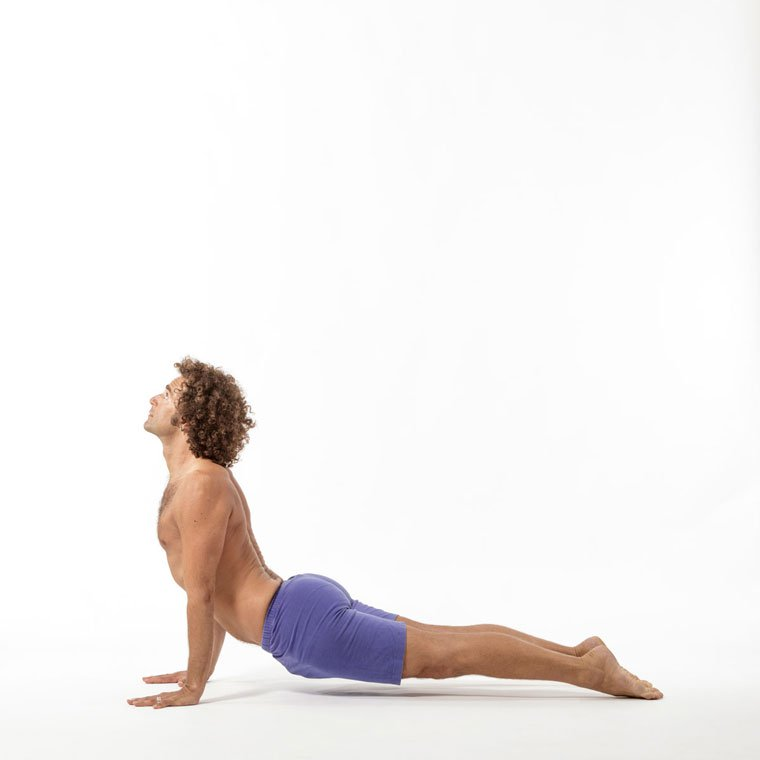 Urdhva Mukha Svanasana - Upward facing dog pose