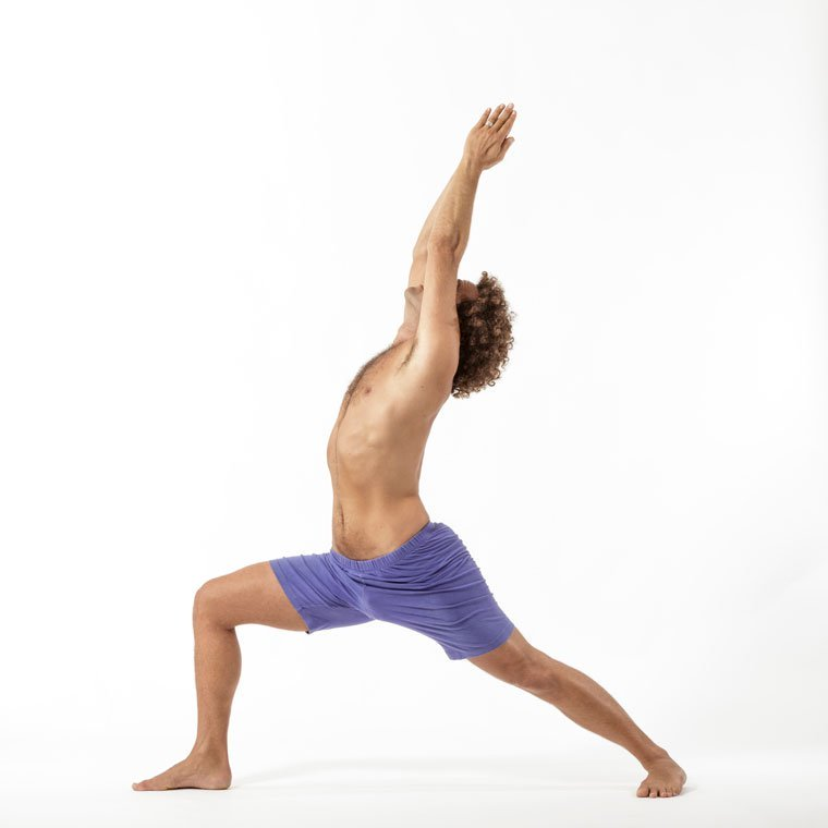 Virabhadrasana I - Warrior 1