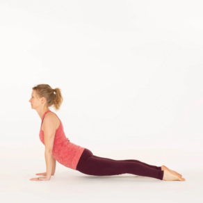 Upward facing dog yoga pose Urdhva Mukha Svanasana