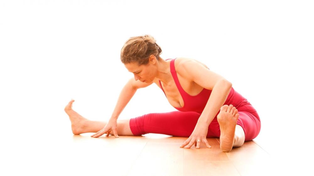 inner leg muscles