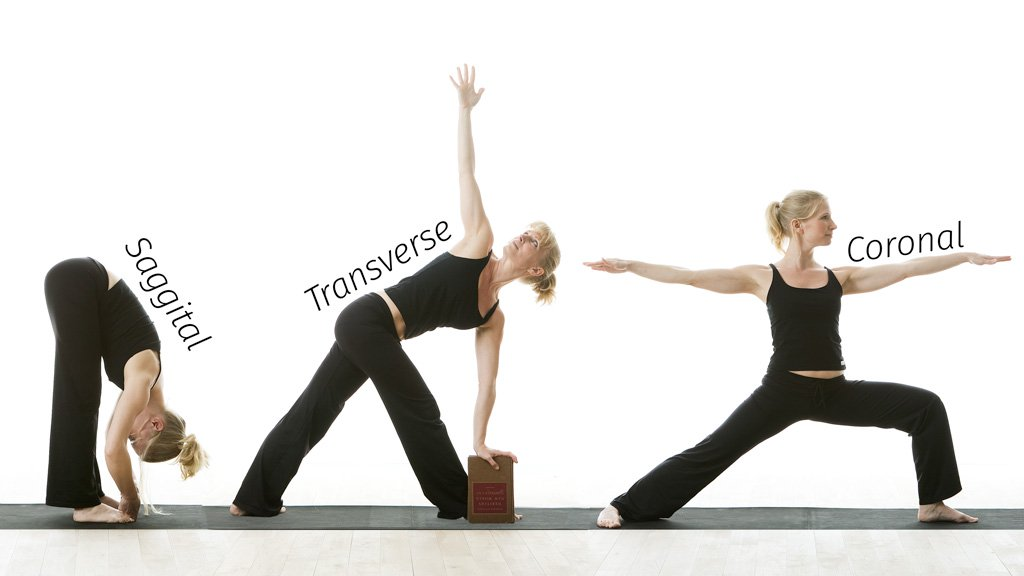 The three planes of movement